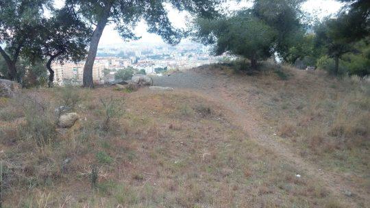 Monte Limpio de acumulacion de restos desperdigados sobre el suelo, recipientes de cristal, latas en el monte Calle Llobregat