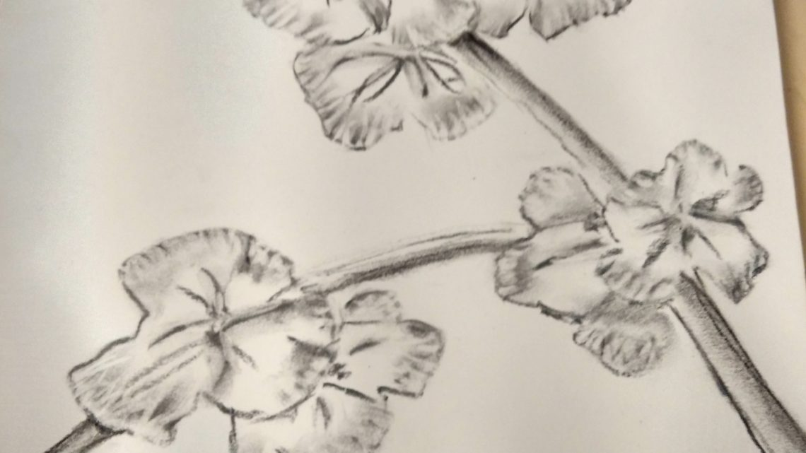 Pintura y Dibujo técnico e Artístico