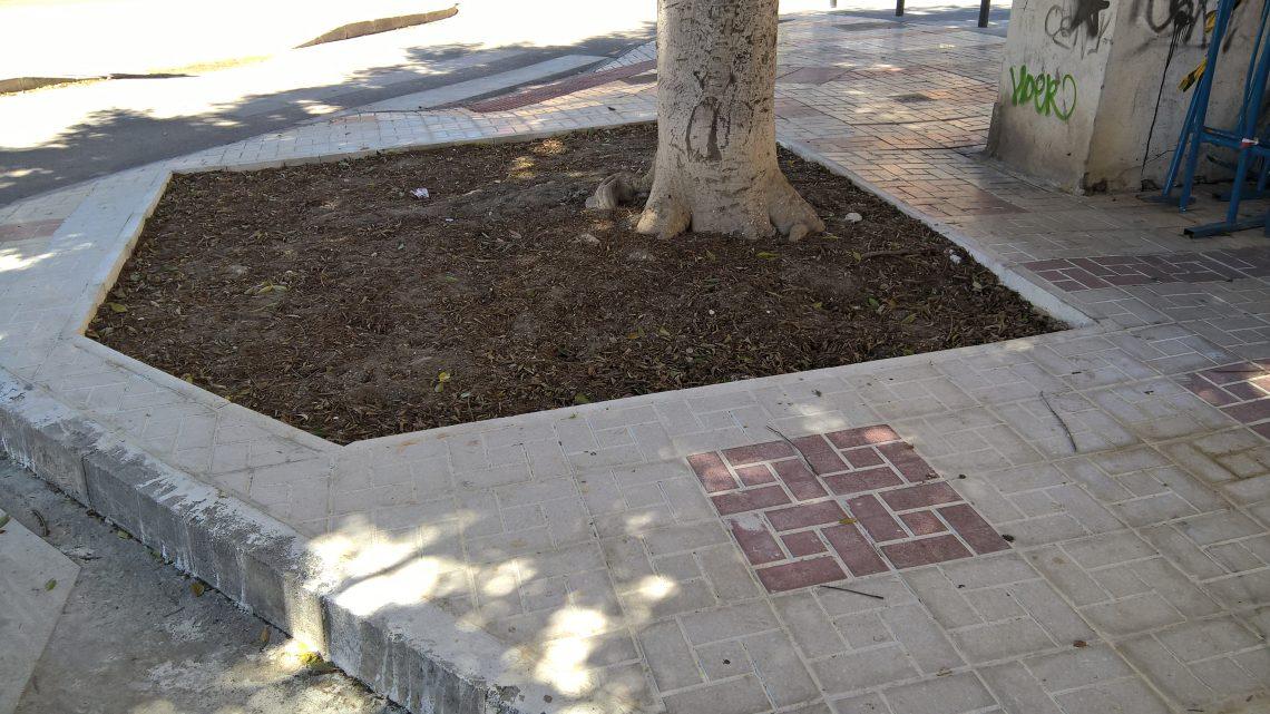 Reconstrucción alcorques afectados por raíces e pavimento