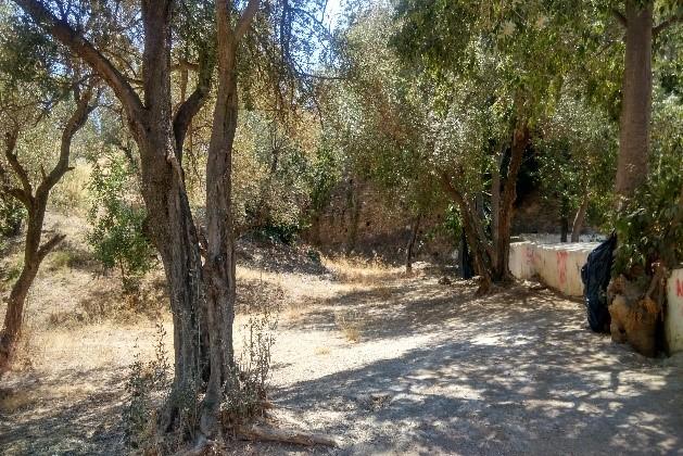 Retirado el contenido del extintor polvo del suelo del Parque Forestal El Nogal