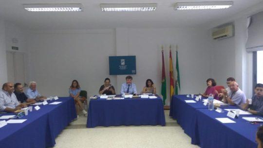 Asociación de Vecinos Pablo Picasso Jardìn de Màlaga Presentes en el Consejo Territorial Distrito 3, Ciudad Jardín  9 de octubre 2019, a las 18 horas,