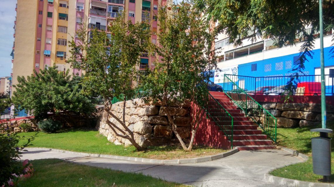 Actuación de poda ramas reducción de volumen invasión de itinerario Parque  Mar de Alborán solicitado por Asociación de Vecinos Pablo Picasso Jardìn de Màlaga