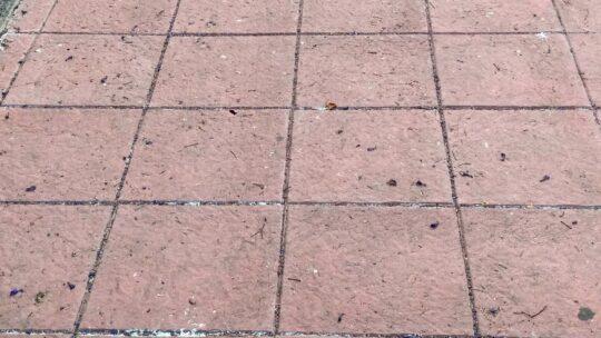 Baldeo manual realizado sobre aceras eliminaciòn de resina incrustado depositados en la superficie viaria Calle Llobregat 8