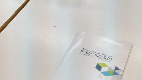 Asociación de Vecinos Pablo Picasso Jardìn de Màlaga Presentes en la COMISIÓN DE DESARROLLO SOSTENIBLE, URBANISMO MEDIO, AMBIENTE, INFRAESTRUCTURA ,EMPLEO,COMERCIO Y NUEVAS TECNOLOGÍAS. 28 Lunes 20,00 horas